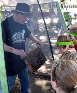 Bee keeper shows kids a tray of bees and honey