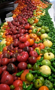Tomatoes at the National Heirloom Expo