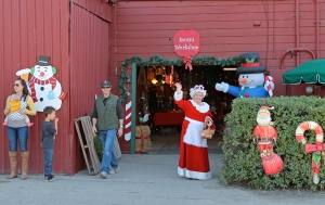 Mrs Claus at Frosty Moutain Tree Farm