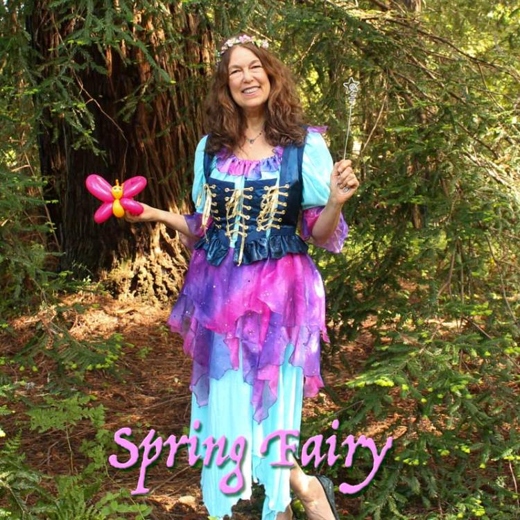 Auntie Stacey's Face painting, fairy costume, Santa Rosa, SF Bay area, balloons, children's entertainment